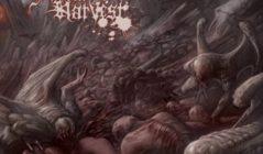 Daemon Foetal HarvestBoT