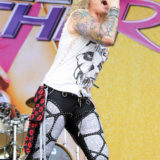 Steelpanther 12