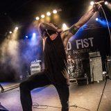 Raised Fist (1)