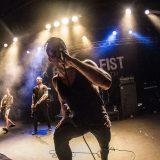 Raised Fist (2)