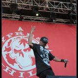 Cypress Hill (1)