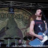 Sylosis (4)
