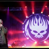 The Offspring (3)