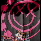 Blink 182 (2)