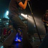 Tumbleweed (4)