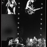 Red Hot Chili Peppers (5)