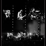 Red Hot Chili Peppers (6)