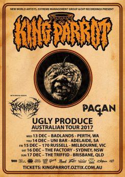 King Parrot Tour 2017