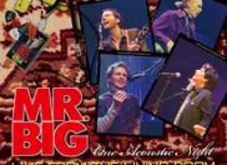Mrbig LFLRcover 1 Cover Album