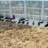 Shoe Graveyard