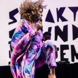 Sneaky Sound System (8)
