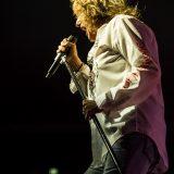 Whitesnake 04