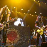 Whitesnake 19