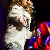 Whitesnake 23