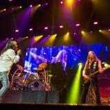 Whitesnake 26