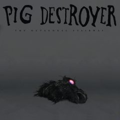 Cover Pig Destroyer The Octagonal Stairway
